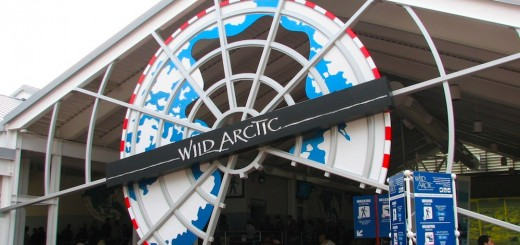 wild-arctic