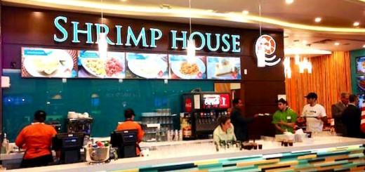 shirmp-house-brazil