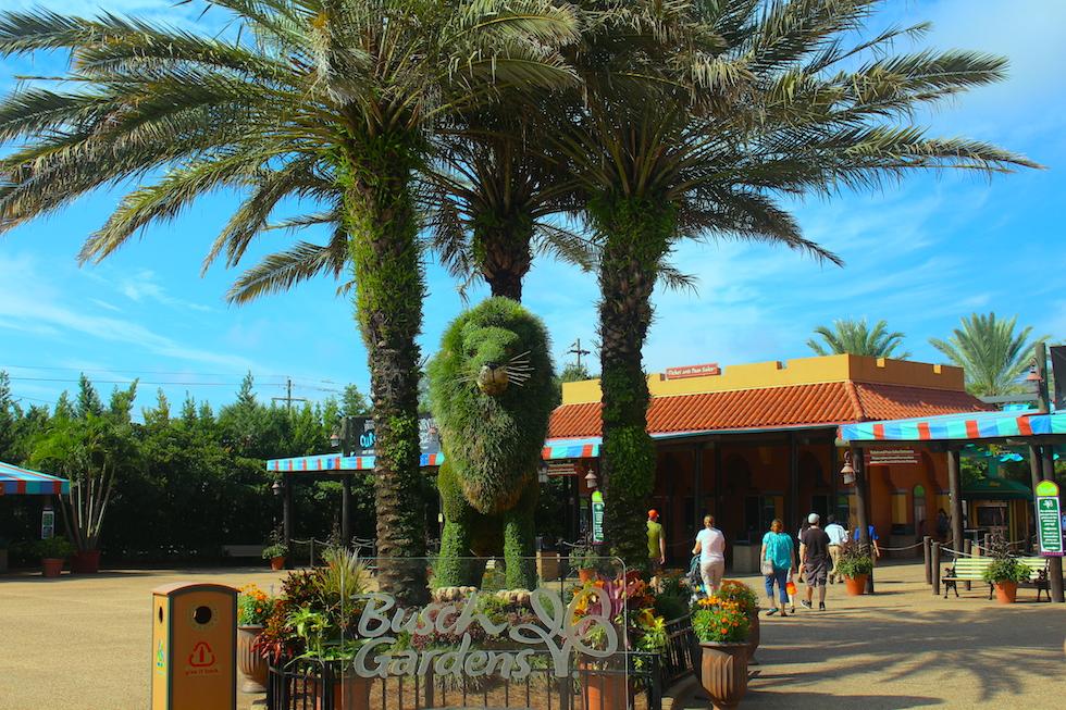 busch-gardens-tampa