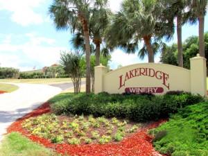 Lakeridge-Winery